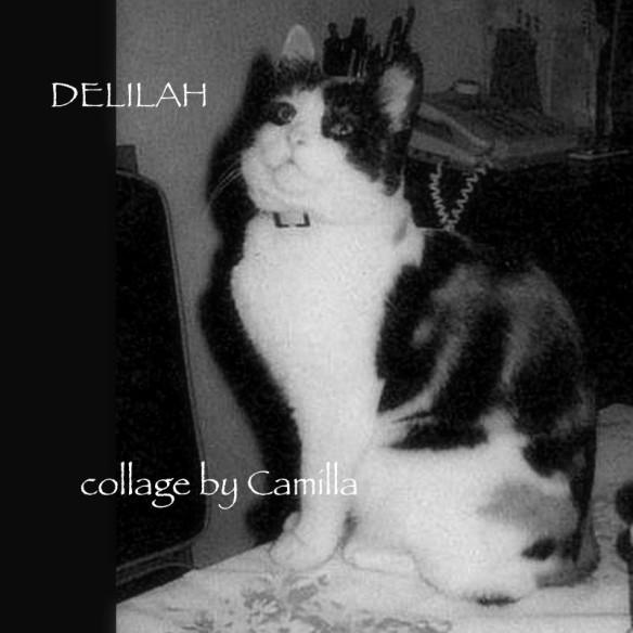 Freddie's Delilah